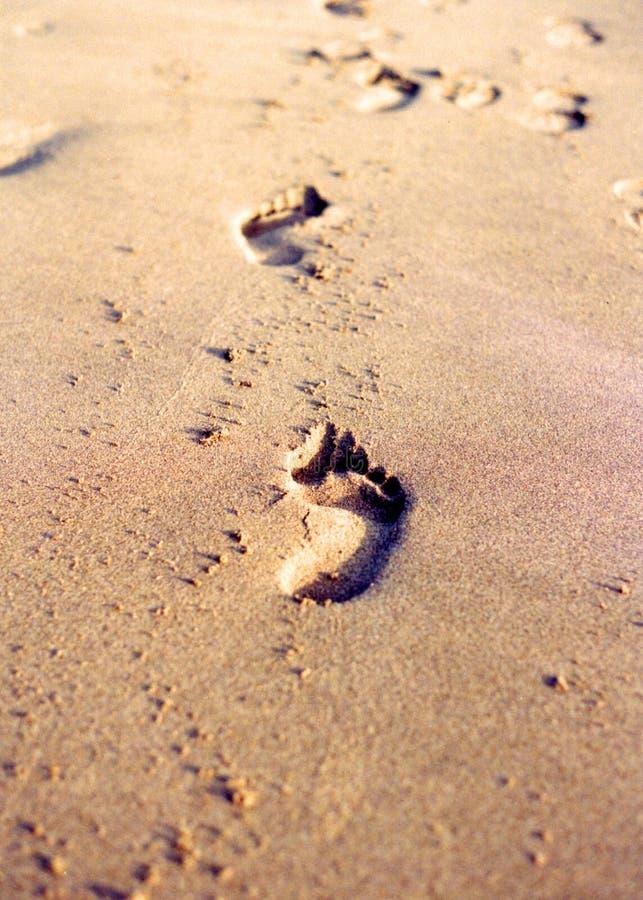 Voetafdrukken op zandig strand stock foto