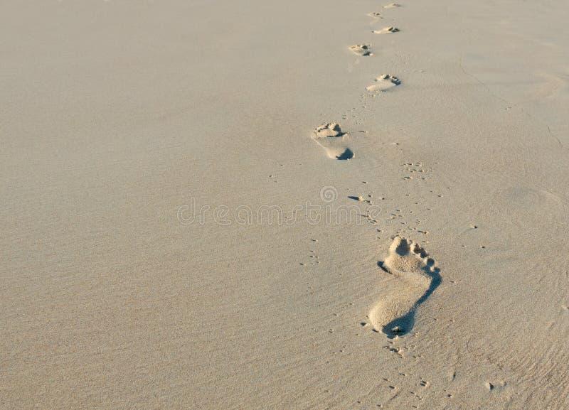 Voetafdrukken in zand stock foto