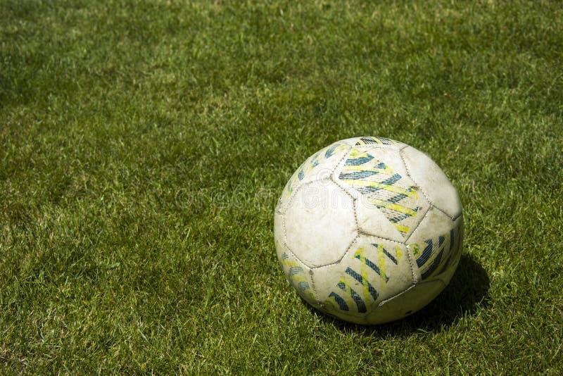 Voetbal op groen gras stock afbeelding