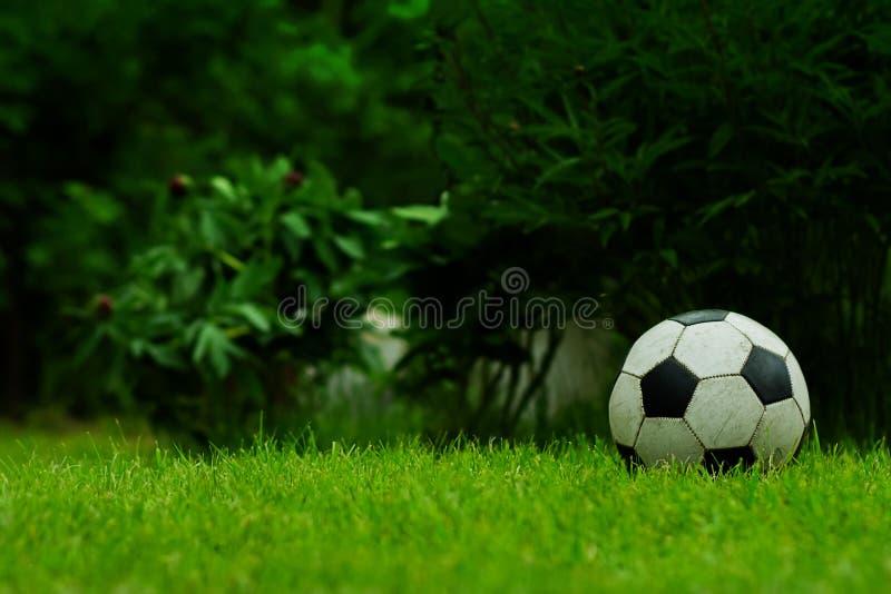 Voetbal op het gazon royalty-vrije stock foto's