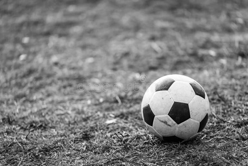 Voetbal op het gazon stock foto