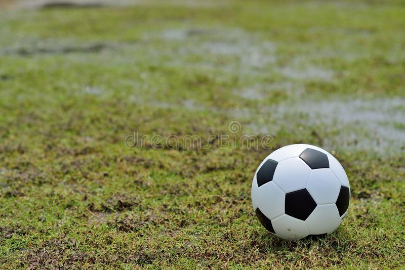 Voetbalgebied en de verstralers royalty-vrije stock afbeelding