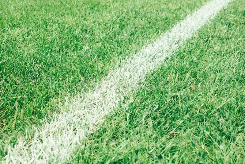voetbalgebied, groen die gazon met een lijn met witte verf wordt getrokken royalty-vrije stock afbeelding