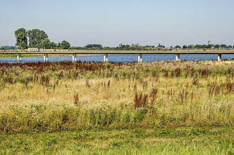 Voetbrug in de alluviale gebieden stock afbeelding
