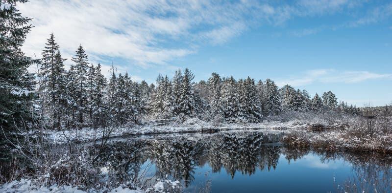 Voetbrug in de winterhout Verse gevallen die sneeuw dan in kristallen wordt behandeld royalty-vrije stock foto's