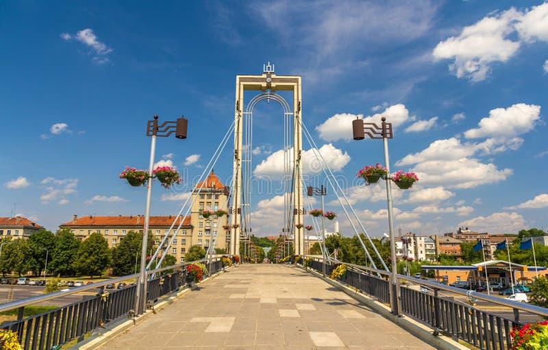 Voetbrug over Nemunas-rivier in Kaunas stock foto's