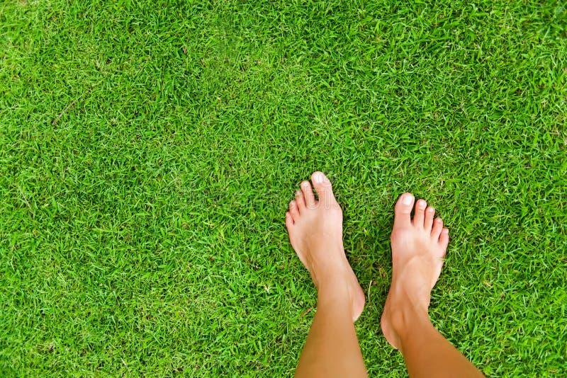 Voeten op een gras stock afbeeldingen