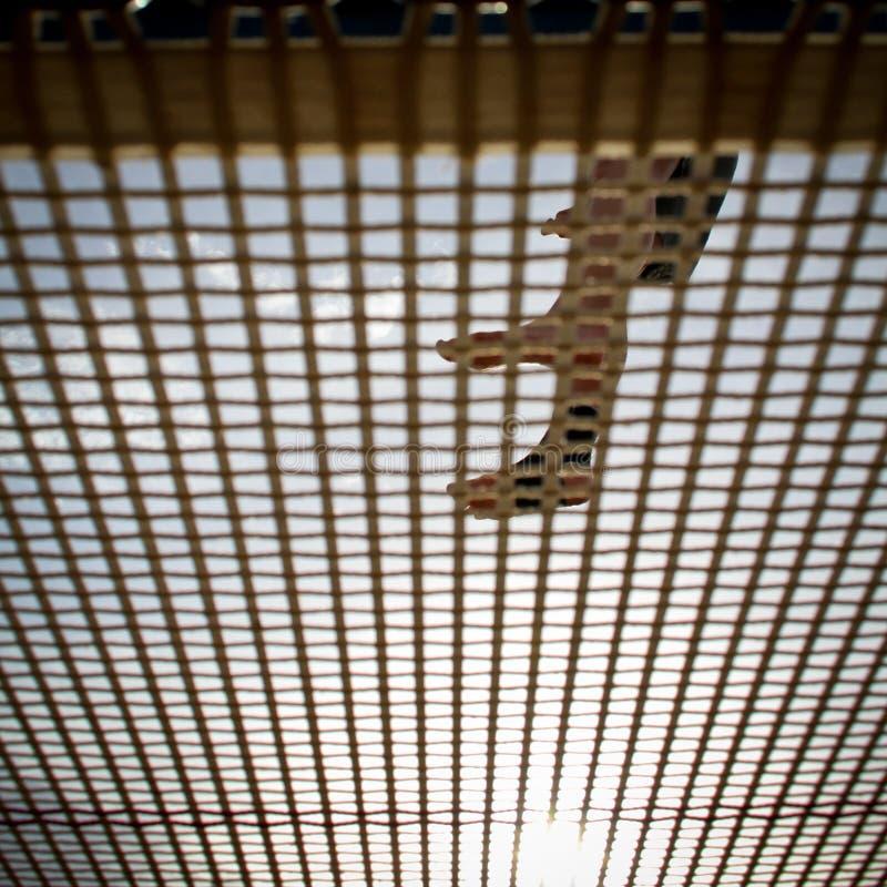 Voeten op trampoline stock afbeelding