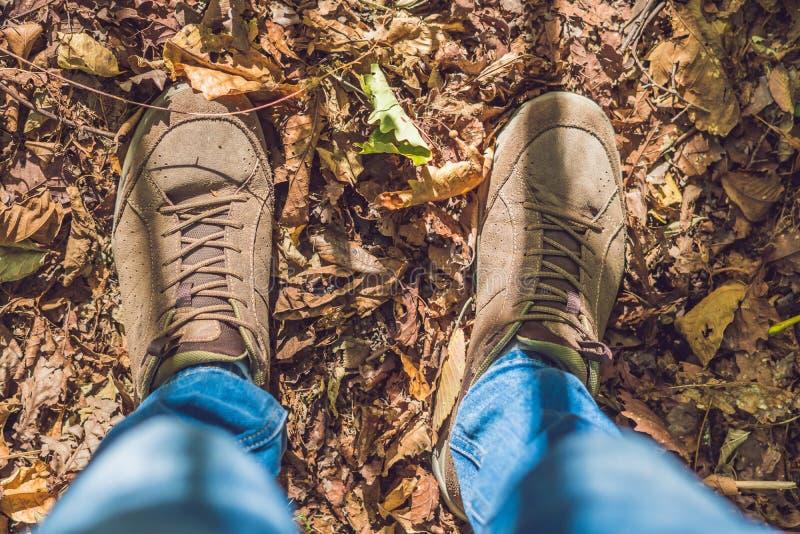 Voeten tennisschoenen die op dalingsbladeren lopen in park met de Herfstseizoen royalty-vrije stock afbeeldingen
