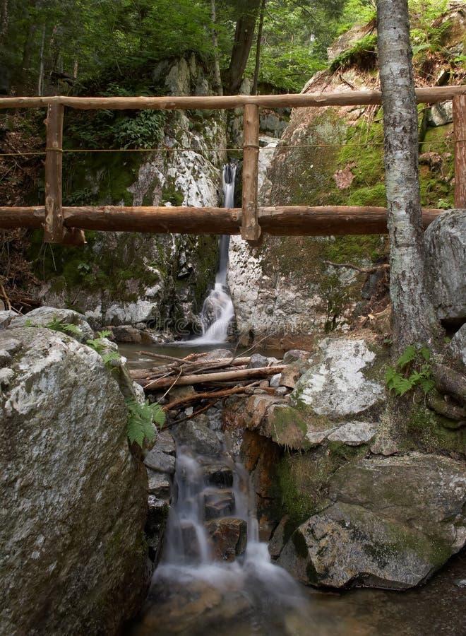 Voetgangersbrug over een kleine waterval stock foto