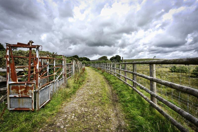 Voetpad die tot Dartmoor leiden Dartmoor Nationaal Park in het UK stock fotografie