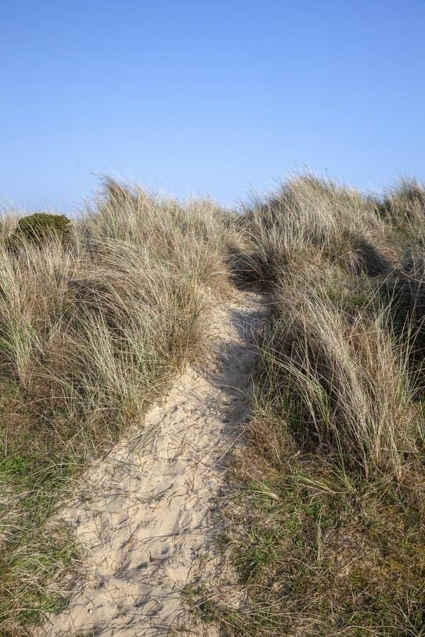 Voetpad door de grassen op Walberswick-strand, Suffolk, Engeland royalty-vrije stock afbeelding