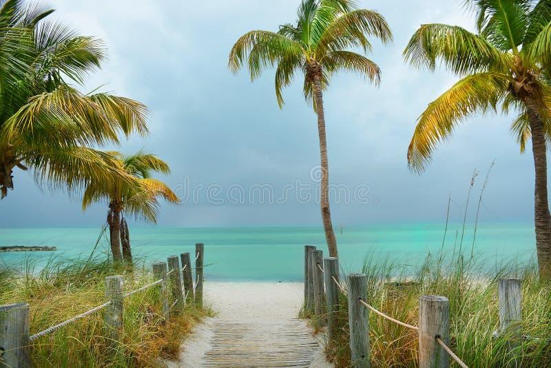 Voetpad op het strand aan de mooie groene oceaan met palmen royalty-vrije stock fotografie