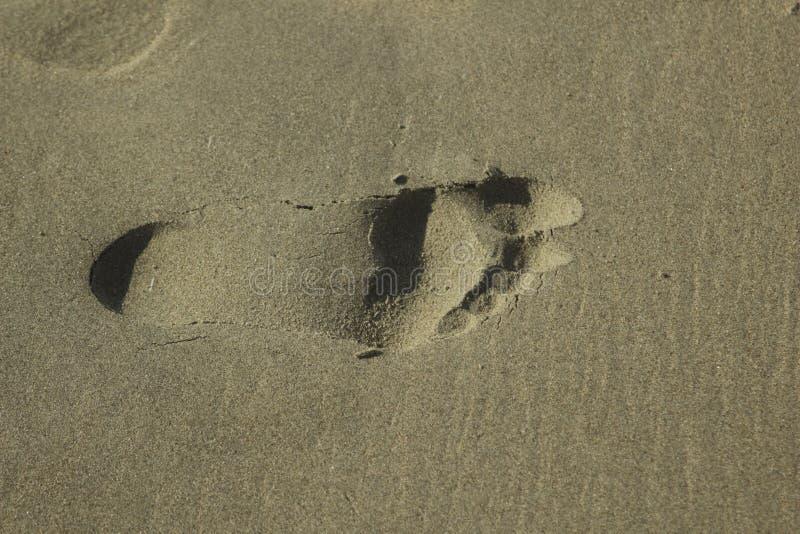 voetstap in het zand stock foto's