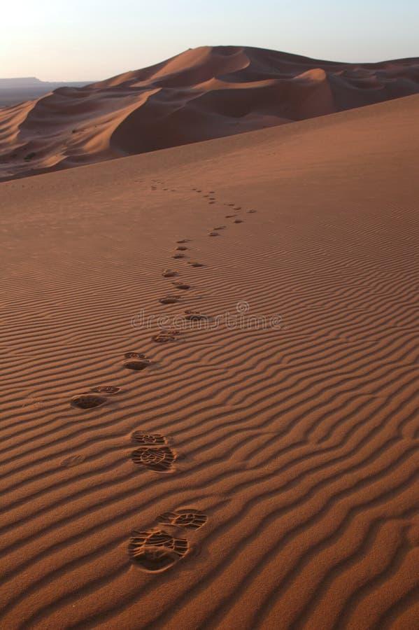 Voetstappen in de Woestijn van de Sahara royalty-vrije stock afbeeldingen