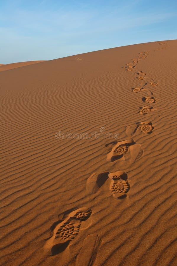 Voetstappen in de Woestijn van de Sahara royalty-vrije stock fotografie