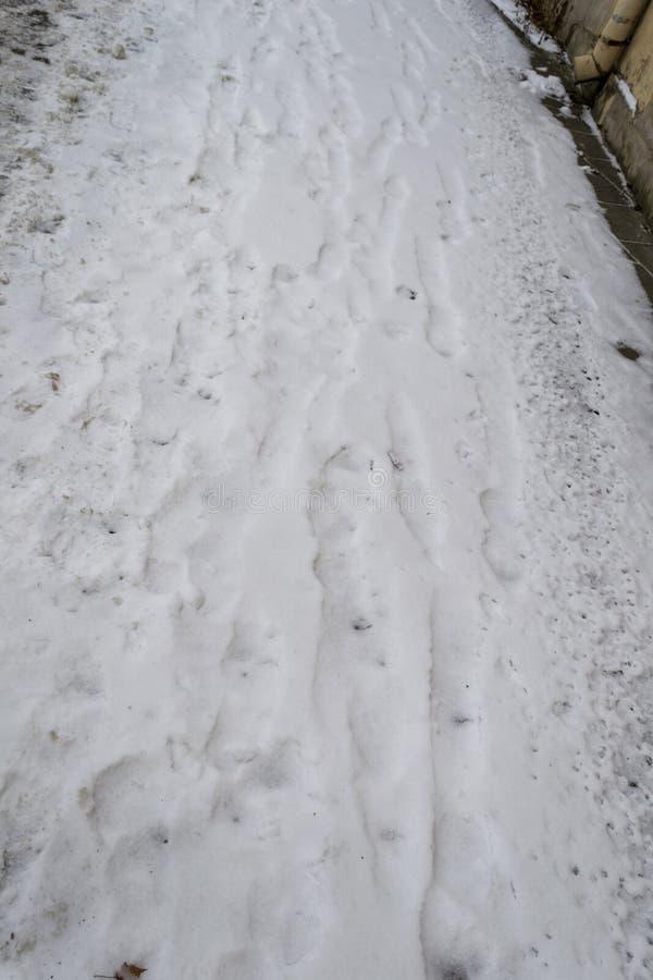 Voetstappen op een Sneeuw stock afbeelding