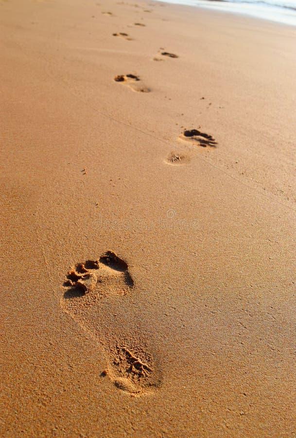 Voetstappen op Zand - Elke Reis van Duizend Miles Begins met een Kleine Stap royalty-vrije stock foto's