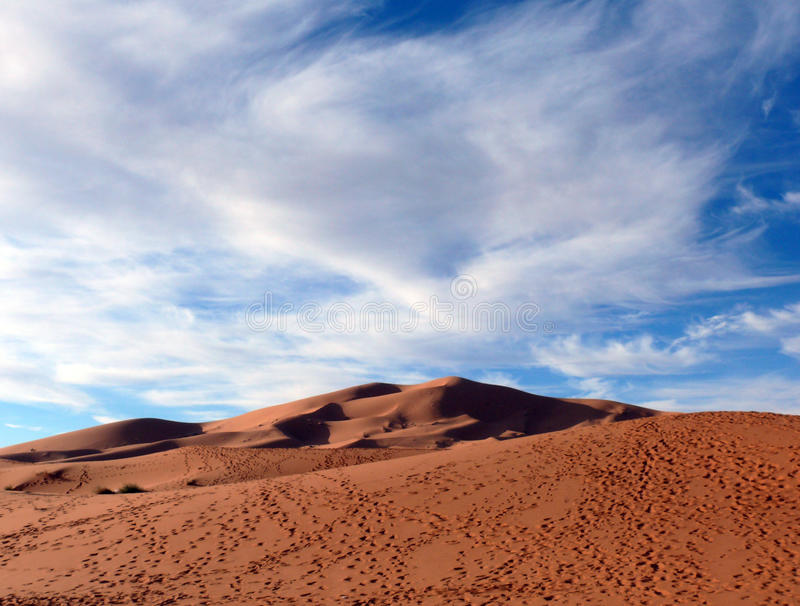 Voetstappen in Sahara Desert Dunes royalty-vrije stock foto's