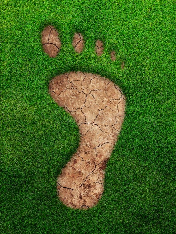 Voetstapteken in het gras vector illustratie