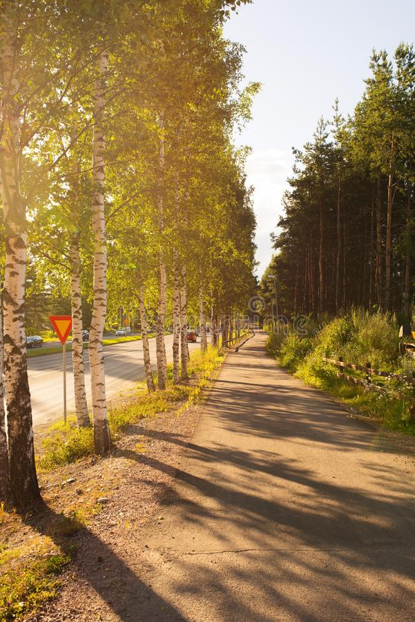 Voetweg of steeg in de zonsondergang stock afbeelding