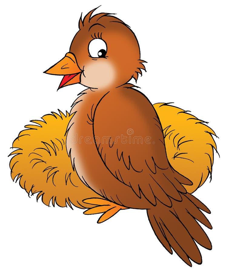 Vogel vektor abbildung