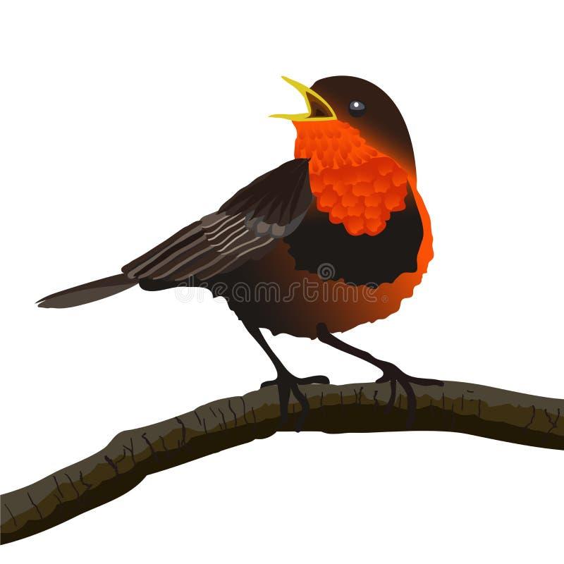 Vogel royalty-vrije illustratie