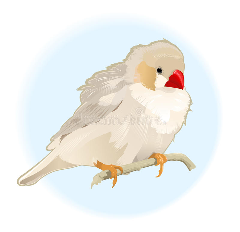 Vogel auf Zweig vektor abbildung