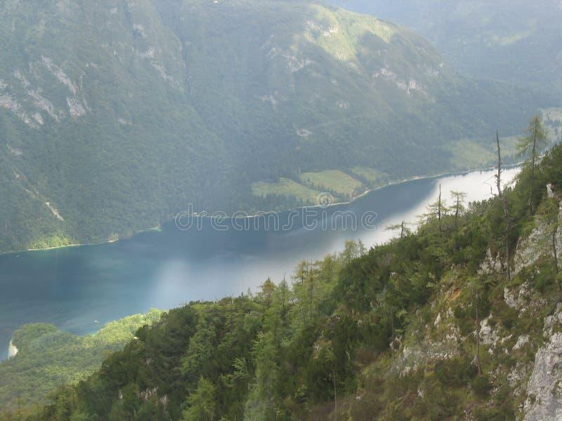 Vogel-Berg stockbild