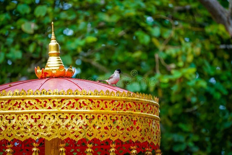 vogel bij het Thaise traditionele in de schaduw stellen royalty-vrije stock afbeeldingen