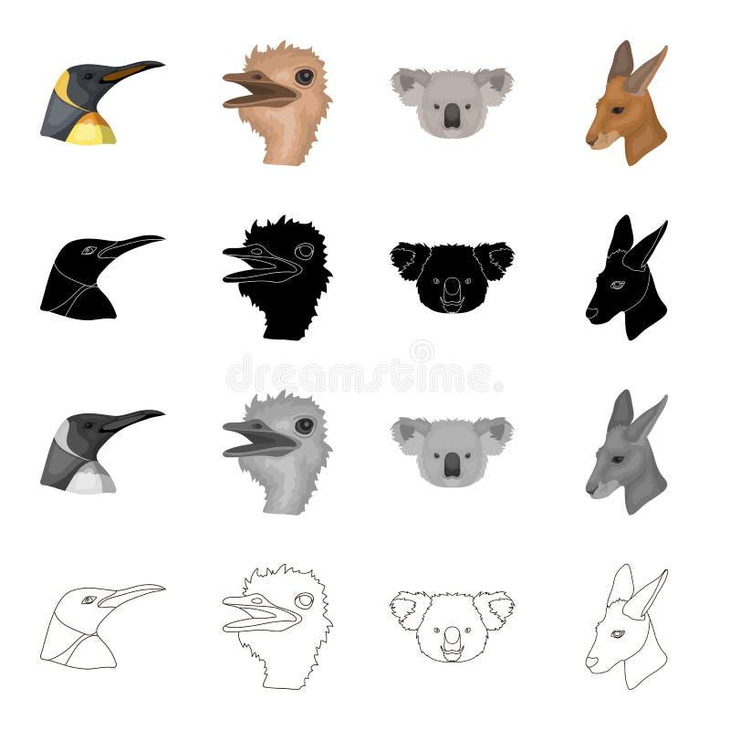 Vogel des wilden Tieres, Pinguin, Strauß, Emu, Koala, Känguru, Schwärzen gesetzte Sammlungsikonen des realistischen Tieres in der stock abbildung