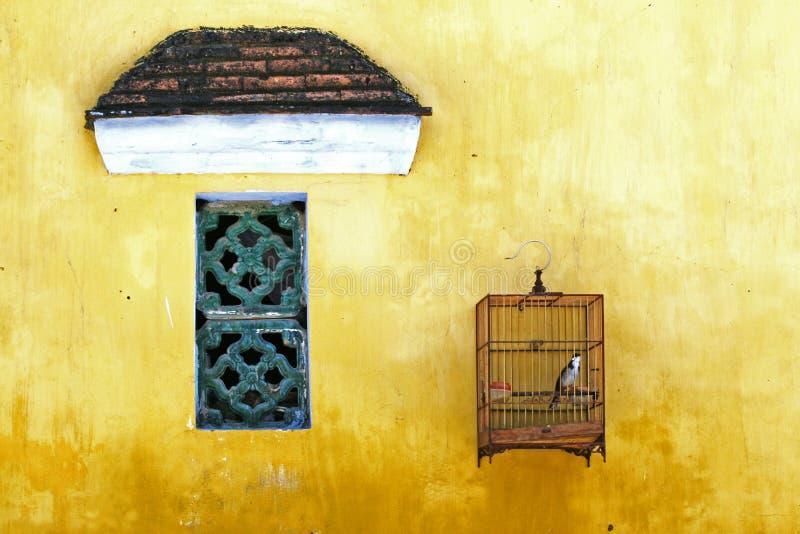 Vogel die in los wordt gehouden royalty-vrije stock foto's