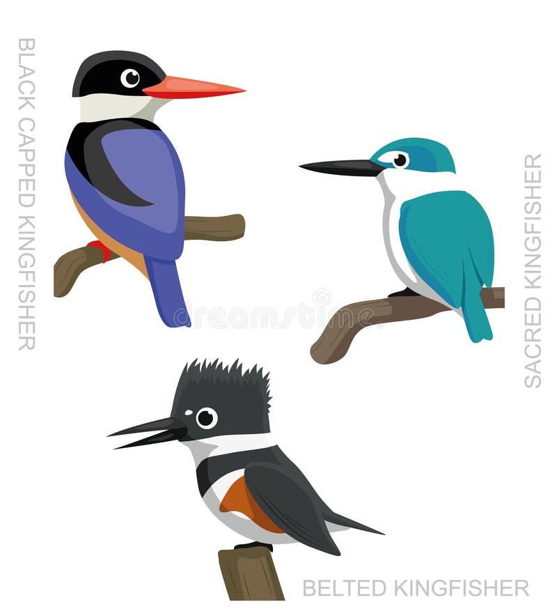 Vogel-Eisvogel-gesetzte Karikatur-Vektor-Illustration 2 lizenzfreie abbildung