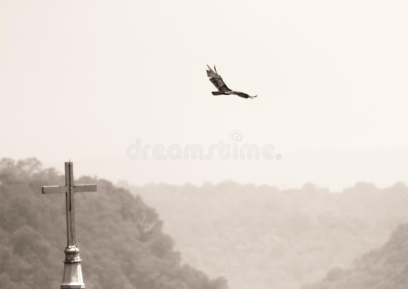 Vogel en kerk stock foto