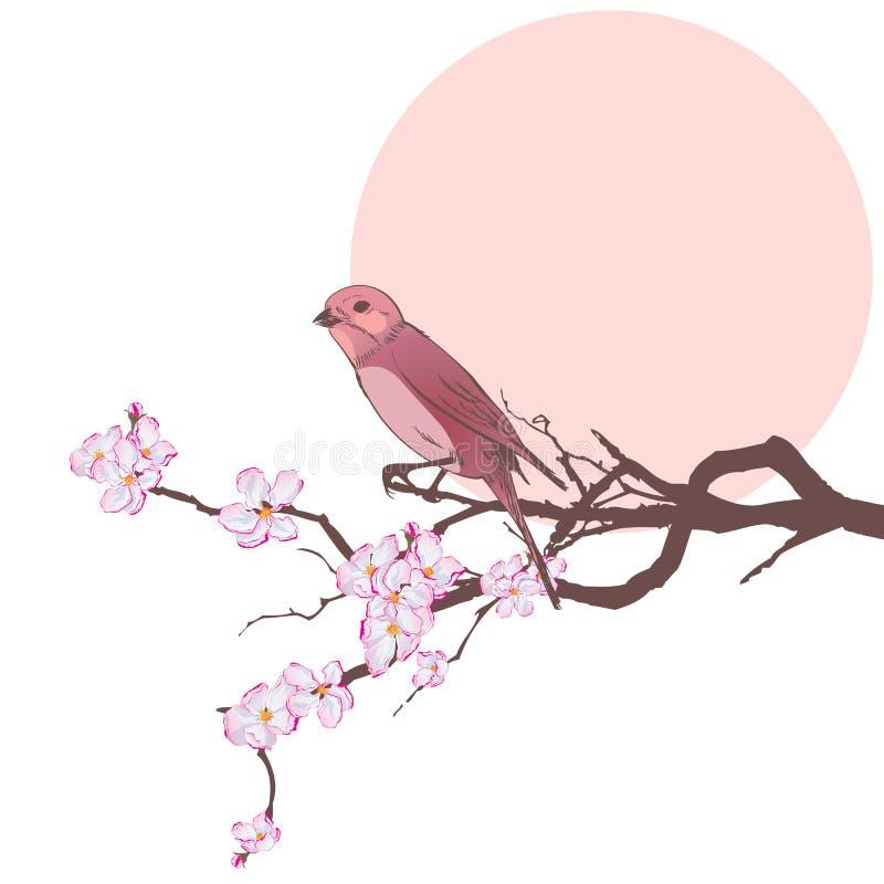 Vogel en tak van kersenboom stock illustratie