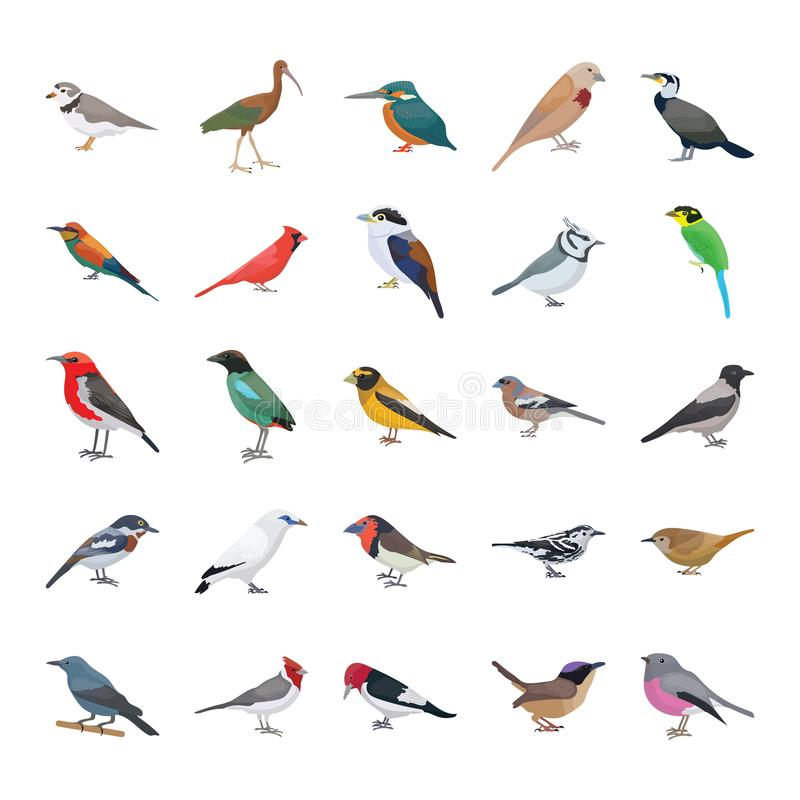 Vogel-flache Vektor-Ikonen-Sammlung lizenzfreie abbildung
