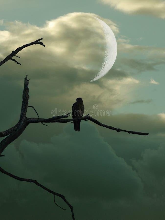 Vogel im Baum vektor abbildung
