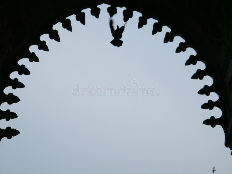 Vogel im Bogen Indo-islamisch lizenzfreies stockbild