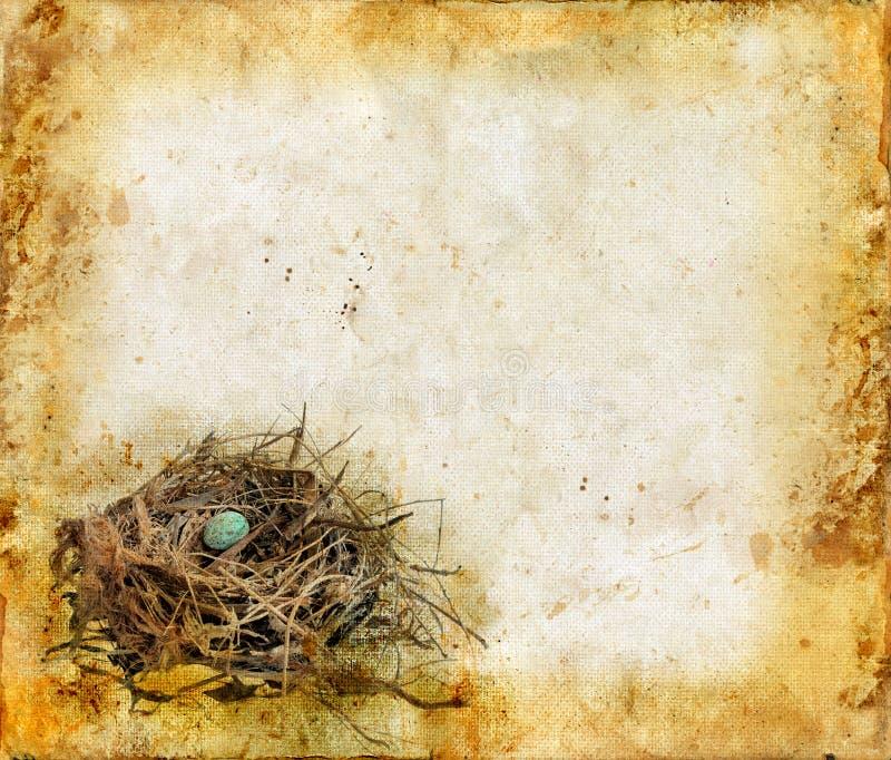 Vogel-Nest auf einem Grunge Hintergrund lizenzfreie abbildung