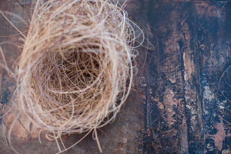 Vogel-Nest-Meditation stockbild