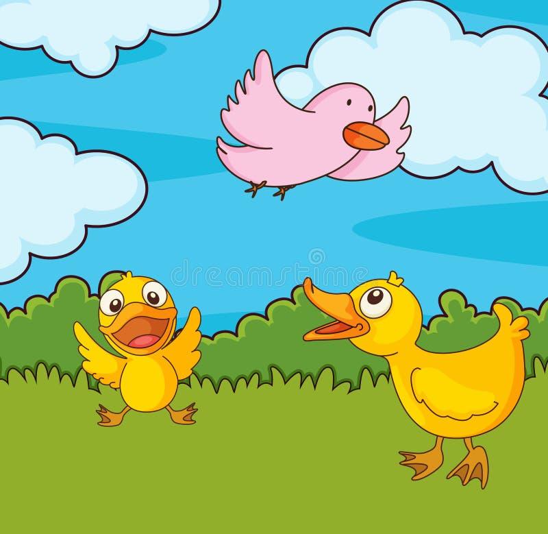 Vogel op een gebied stock illustratie