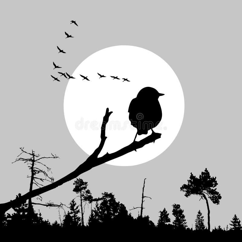 Vogel op tak stock illustratie