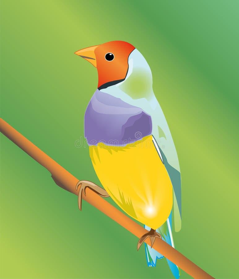 Vogel op tak royalty-vrije illustratie
