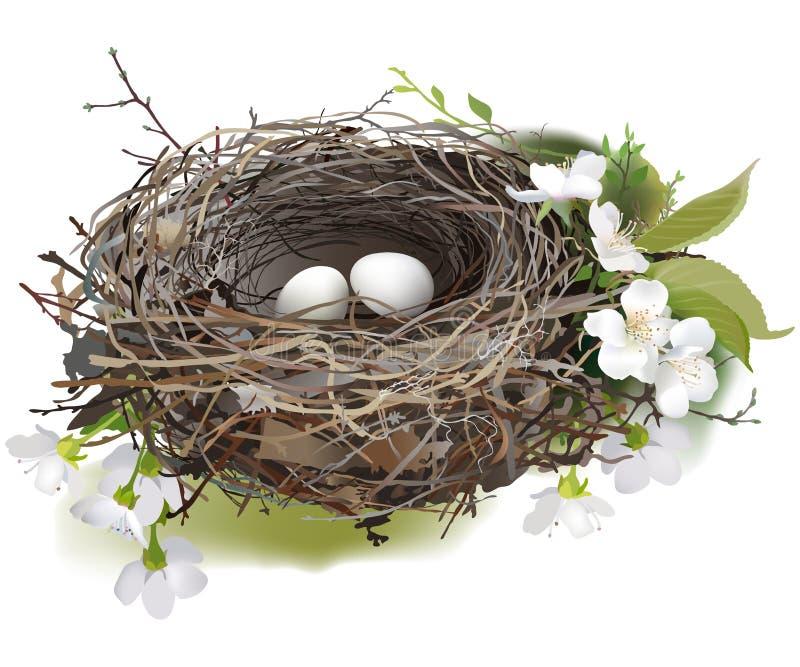 Vogel `s Nest vektor abbildung