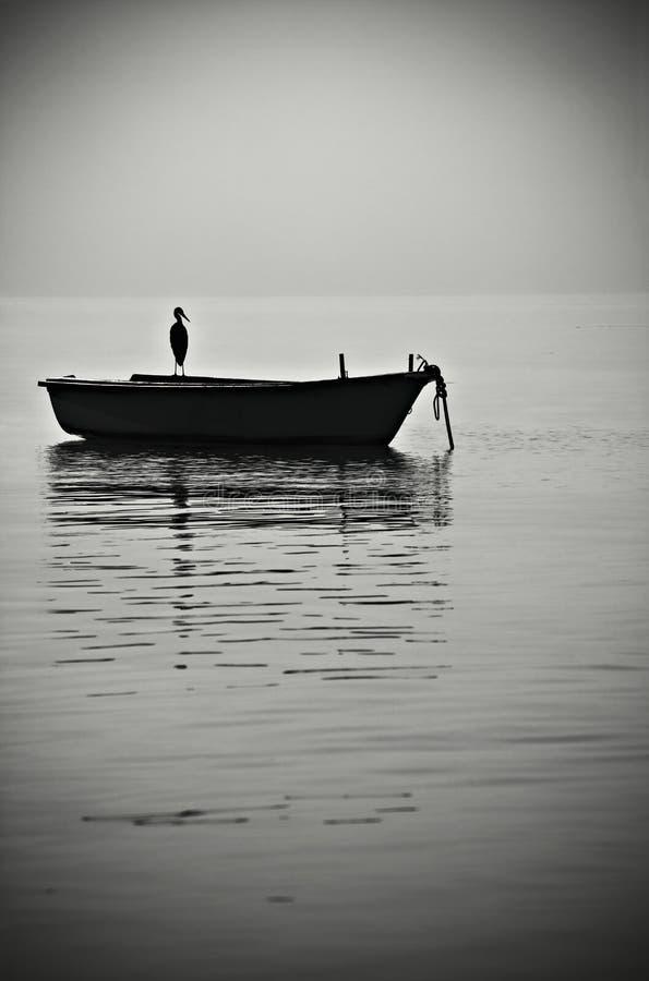 Vogel und Boot stockbild
