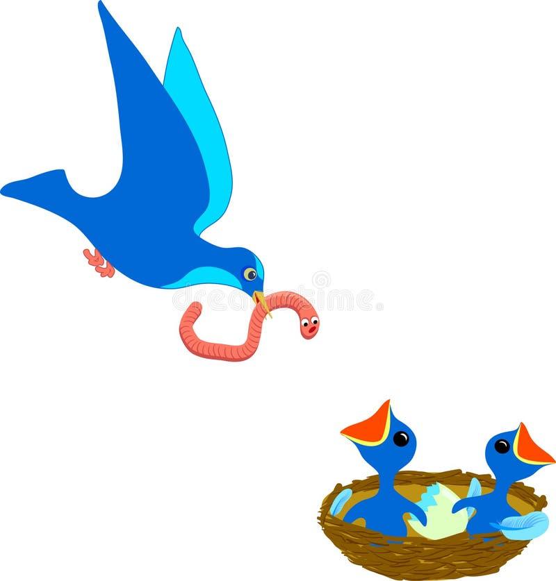 Vogel und Nest vektor abbildung