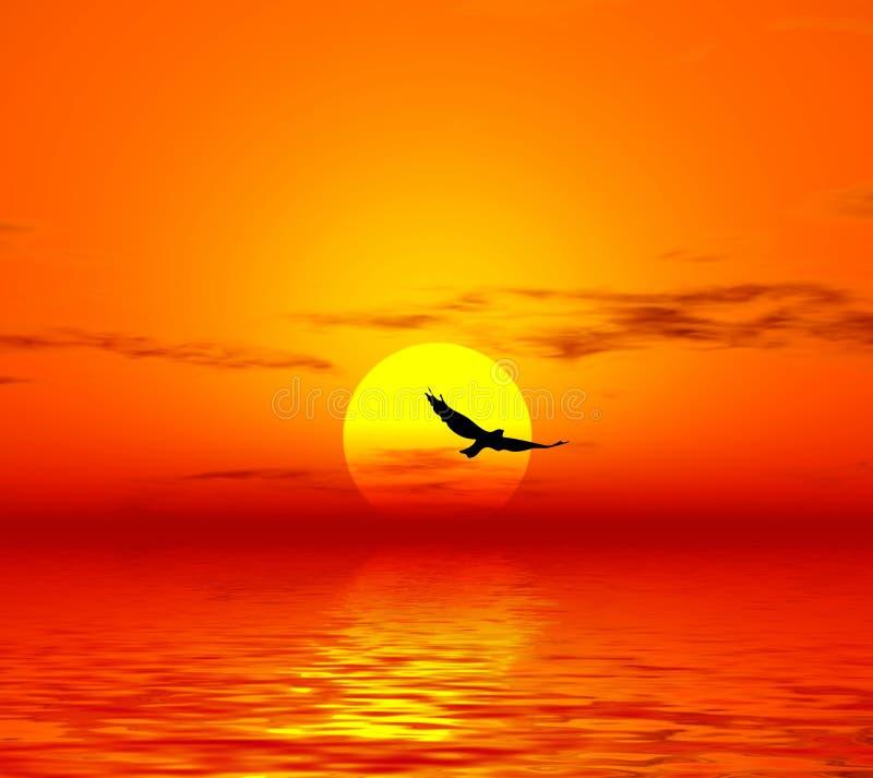 Vogel und Sonne lizenzfreie abbildung