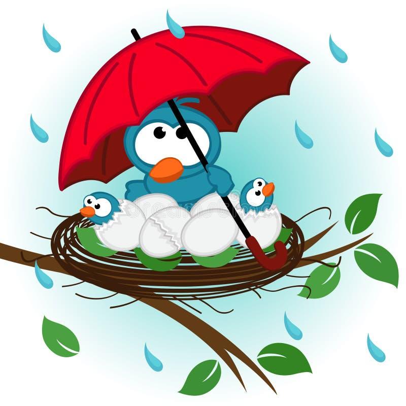 Vogel unter Regenschirm im Nest stock abbildung