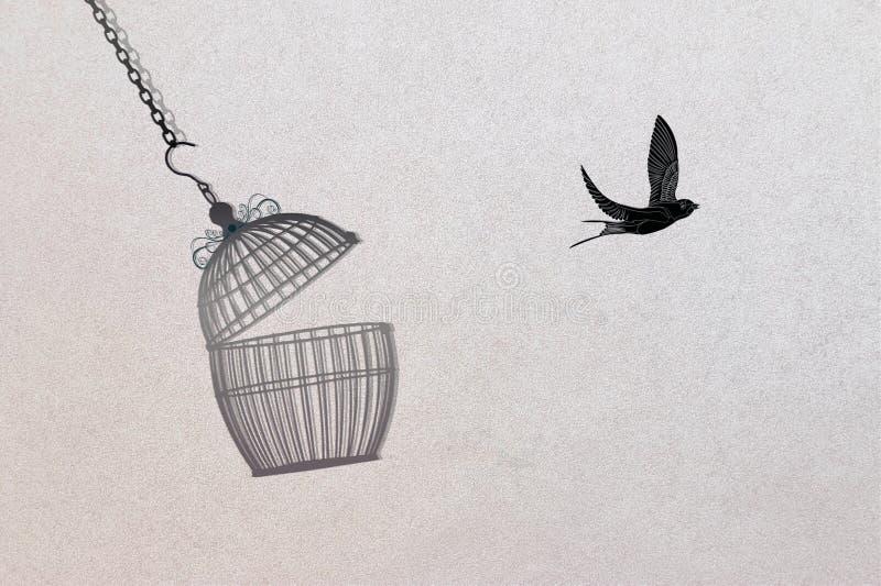Vogelentweichen aus Birdcage heraus, Freiheitskonzept lizenzfreie abbildung