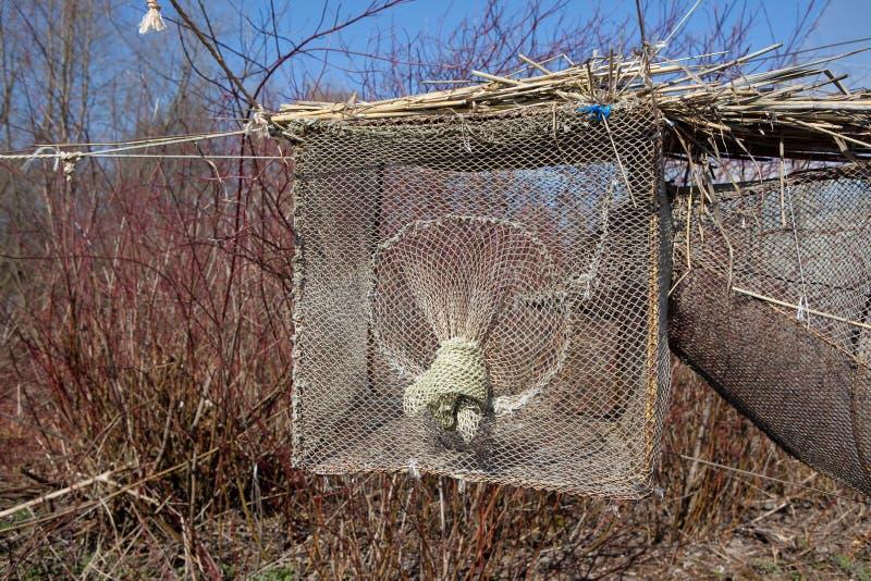 Vogelfalle im Vente Umhang stockfotografie